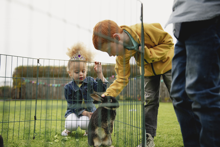 Low angle view of a young boy leaning over a rabbits cage fence to stroke it. There is a little girl kneeling by the cage to see the rabbit. Reklamní fotografie