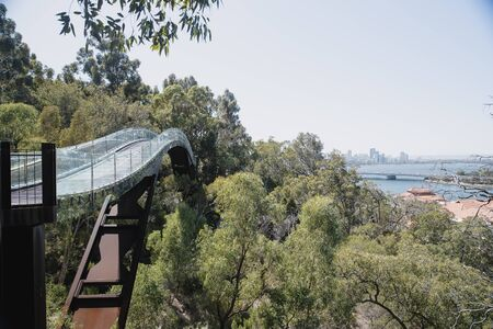 View of the Glass Bridge in Kings Park, Perth, as it disapears into the trees. The city sky line is also visible, as is Swan River.