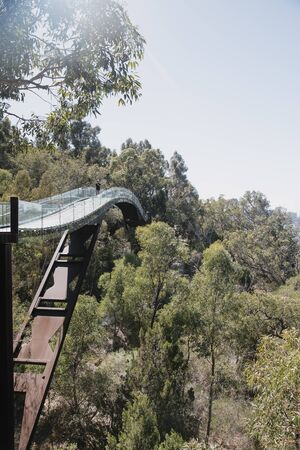 View of the Glass Bridge in Kings Park, Perth, as it disappears into the trees.
