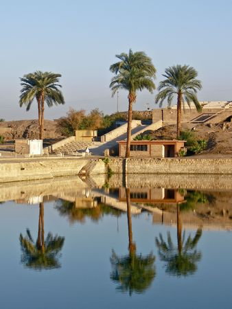 three palm trees: Reflections of three palm trees in sacred pond in Karnak temple