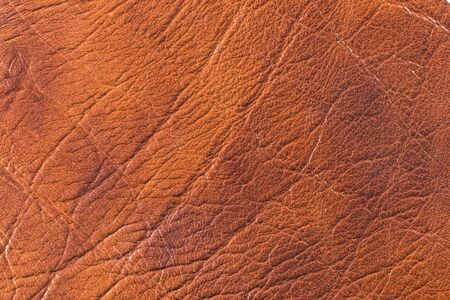 color skin brown: Natural qualitative brown leather texture. Close up. Stock Photo