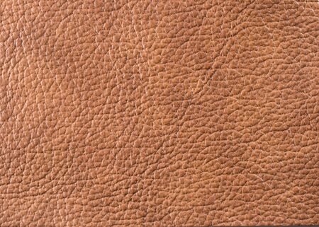 coarse: Natural qualitative brown leather texture. Close up. Stock Photo