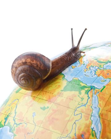 slithery: Garden snail travelling around the world Stock Photo