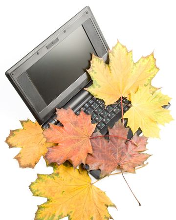 Notebook and autumn leaves on a white background. Stock Photo - 3710210