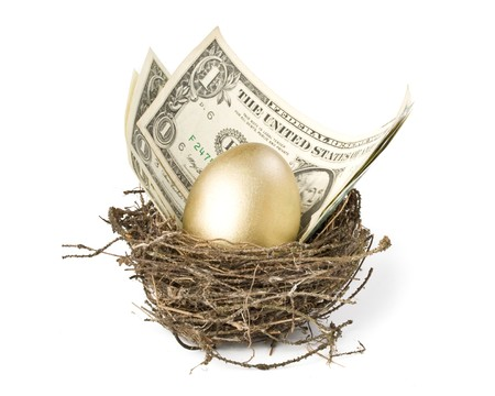 Gold egg and money in a real nest Stock Photo - 4022862