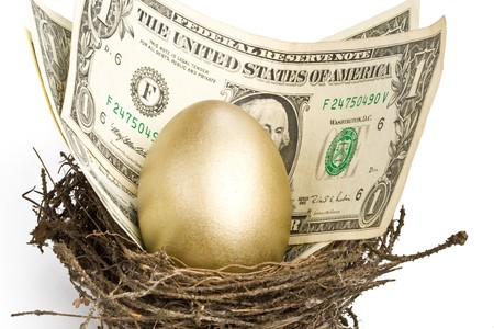 Gold egg and money in a real nest Stock Photo - 4022911