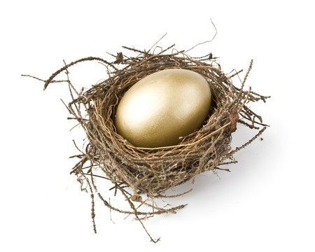 Gold egg in a real nest Stock Photo - 4022896
