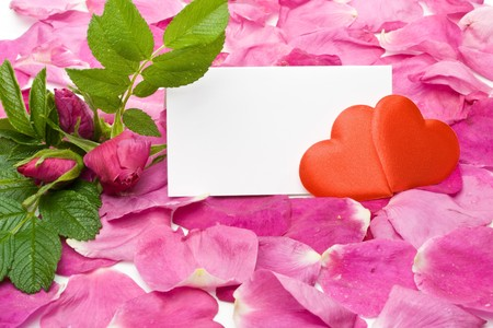 Flower, petals, hearts and blank card for your text photo