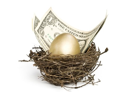 Gold egg and money in a real nest Stock Photo - 4096353