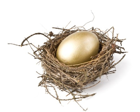 Gold egg in a real nest Stock Photo - 4096347