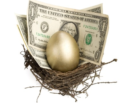 Gold egg and money in a real nest Stock Photo - 4096425