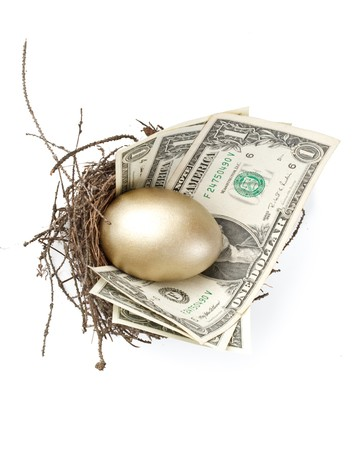 Gold egg and money in a real nest Stock Photo - 4142097