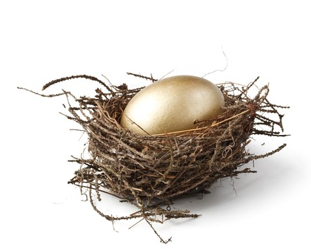 Gold egg in a real nest Stock Photo - 4142089