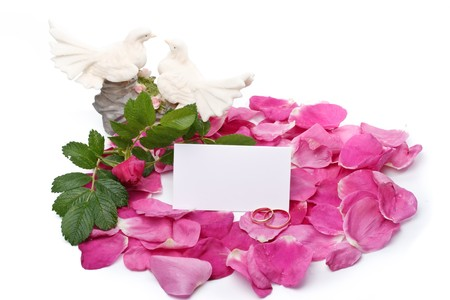 Flower, petals, figurine, wedding rings and blank card for your text Stock Photo - 4142157