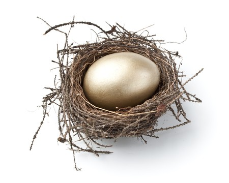 priceless: Gold egg in a real nest