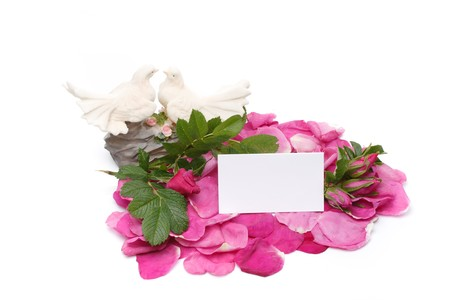 Flower, petals, figurine and blank card for your text photo