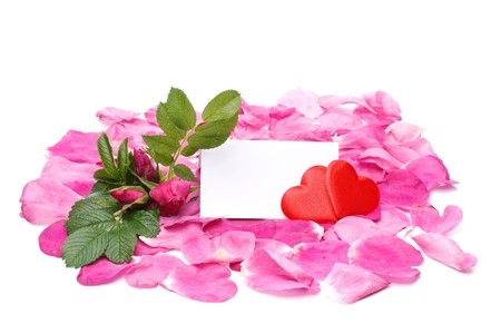 Flower, petals, hearts and blank card for your text Stock Photo - 4152401