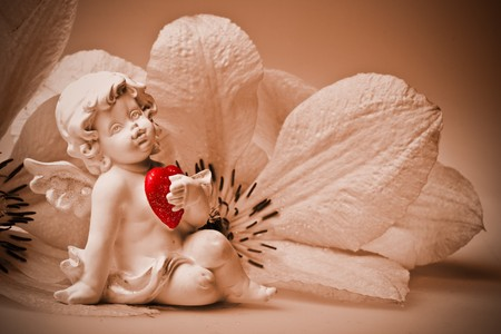 Cupid with heart and flower. Valentines day card. photo