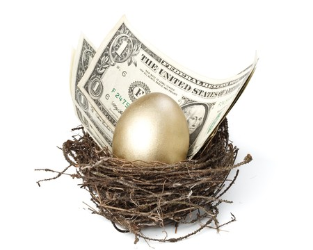 Gold egg and money in a real nest photo