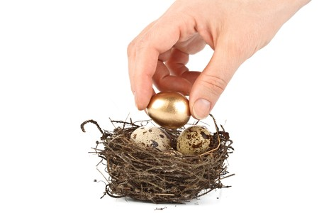 Gold egg in a real nest. Concept for success. Stock Photo - 4345579