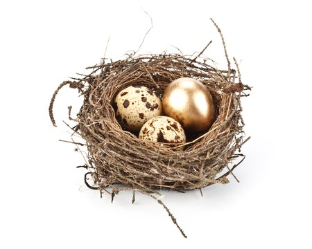 Gold egg in a real nest. Concept for success. Stock Photo - 4359893