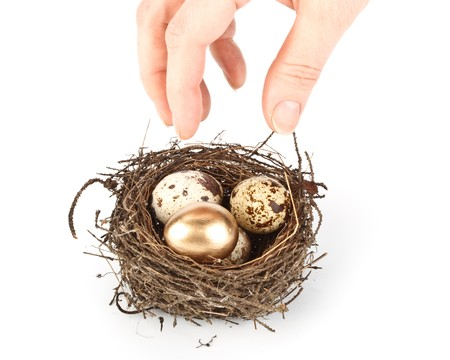 Gold egg in a real nest. Concept for success. Stock Photo - 4359874