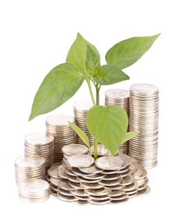 Diagram of growth from coins and transplant of tree on a white background Stock Photo - 4809729