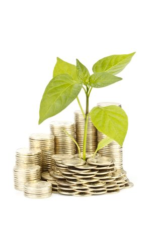 transplant: Diagram of growth from coins and transplant of tree on a white background