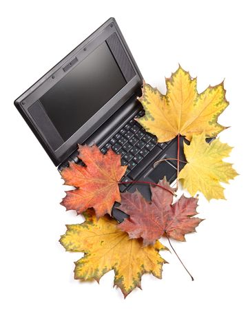 Notebook and autumn leaves on a white background. Stock Photo - 4922004