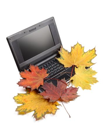 Notebook and autumn leaves on a white background. Stock Photo - 5008050
