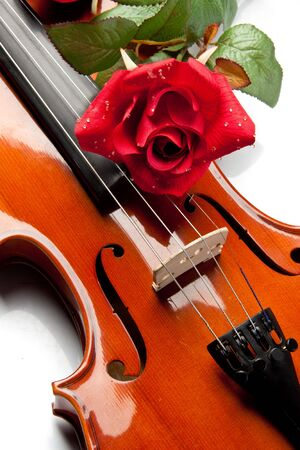 The violin and rose lay on musical notes. photo