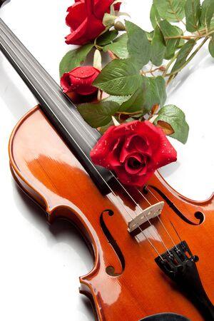 chiave di violino: Il violino e la rosa disteso sul note musicali.