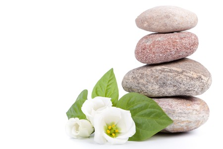gentle: Spa composition on a white background.
