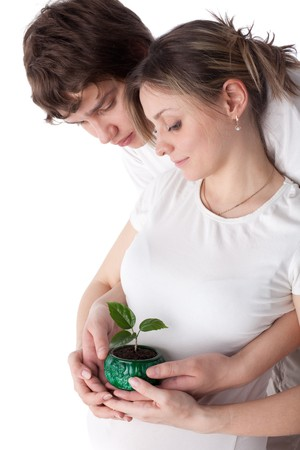 defenceless: Happy pregnant family with green defenceless sprout on a white background. Concept of birth.