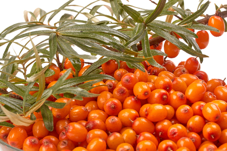 bacca: Background from sea-buckthorn berries