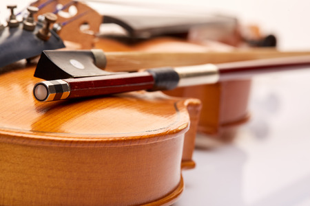 conservatory: Violin on a white background.