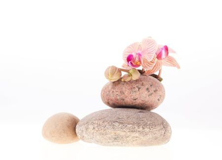 white stones: Stack of stones and orchid flower on white background. Spa concept. Stock Photo