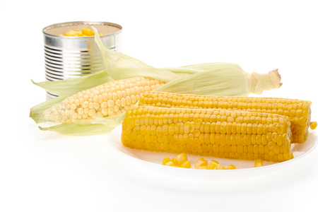 Fresh ripe ear of corn, plate with boiled corn on the cobs and canned corn in tin can on a white background. Banco de Imagens