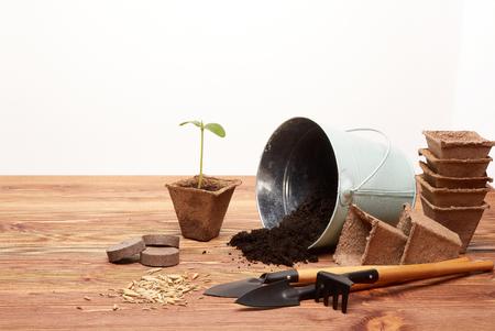 园艺工具,与土壤,泥德赢体育煤,种子和年轻幼木的桶在一张木桌上在白色背景。春天从事园艺的概念。