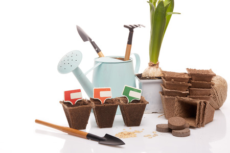 peat pot: Gardening tools, watering can, peat tablets and pots, seeds and young seedlings on a white background. Concept of spring gardening. Stock Photo
