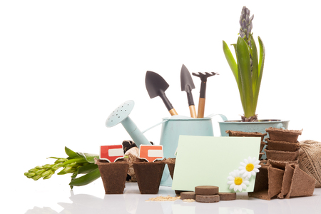 turba: Gardening tools, watering can, peat tablets and pots, seeds, young seedlings and blank business card on a white background. Concept of spring gardening.