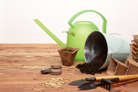 Gardening tools, bucket with soil, peat pots, seeds and young seedlings on a wooden table on a white background. Concept of spring gardening. Reklamní fotografie