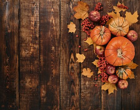 Festive autumn still life  with pumpkins, red apples, berries and leaves on dark  wooden background. Top view with copy space. Concept of autumn harvest, happy Thanksgiving  day or Halloween. Stock Photo