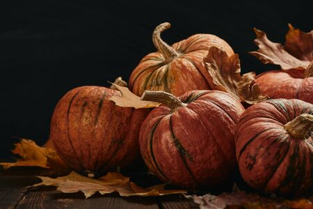 Festive autumn still life  with pumpkins and leaves on wooden table on black background. Concept of autumn harvest, happy Thanksgiving  day or Halloween.