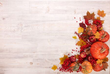Festive autumn still life  with pumpkins, red apples, berries and leaves on light  wooden background. Top view with copy space. Concept of autumn harvest, happy Thanksgiving  day or Halloween.