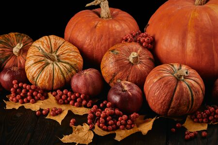 Festive autumn still life with pumpkins, red apples, berries and leaves on wooden table on black background. Concept of autumn harvest, happy Thanksgiving day or Halloween. Foto de archivo