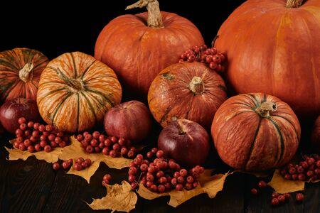 Festliches Herbststillleben mit Kürbissen, roten Äpfeln, Beeren und Blättern auf Holztisch auf schwarzem Hintergrund. Konzept der Herbsternte, Happy Thanksgiving Day oder Halloween. Standard-Bild