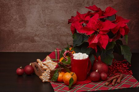 Red Poinsettia flowers, tray with ginger cookies and mandarines, mug with hot cocoa and marshmallows. fir ornaments on brown background with copy space. Winter holidays. New Year, Christmas treat. Stock Photo