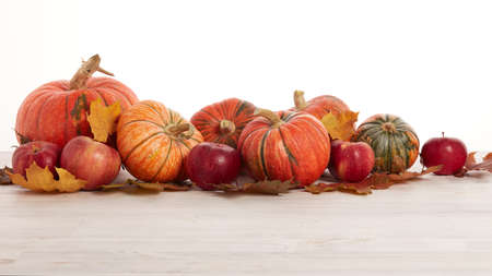 Festive autumn still life with pumpkins, red apples and leaves on light wooden table on white background with copy space. Concept of autumn harvest, happy Thanksgiving  day or Halloween.