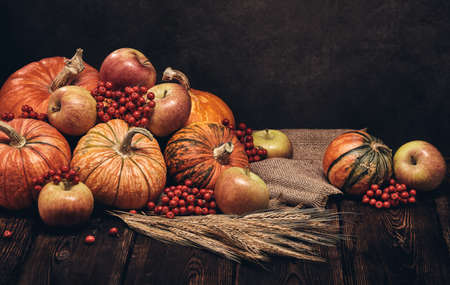 Festive autumn still life with pumpkins, apples, red berries and rye ears on dark wooden surface on brown background with copy space. Concept of autumn harvest, happy Thanksgiving  day or Halloween
